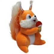 Squirrel (L)