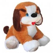 Dog Butuz (E)N