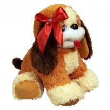 Dog Butuz (S)N