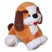 Dog Butuz (M)N