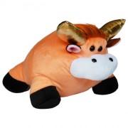 Bull Misha (L)