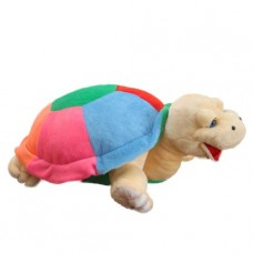 Turtle Tortilla (L)Pl