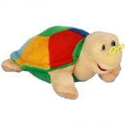 Turtle Tortilla (S)