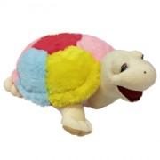 Turtle Tortilla (M)N