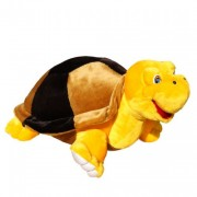 Turtle Tortilla (M)