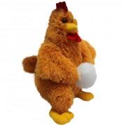 Chicken (S)N