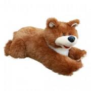 Bear Sluggard (M)C