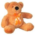 Bear Toptygin (M)N