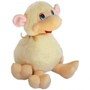 Sheep Dolly (S)N