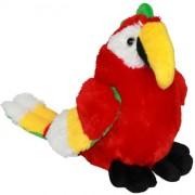 Parrot Kesha (S)N